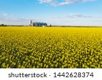 aerial view new grain elevator... | Shutterstock . vector #1442628374