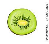 kiwi in cute cartoon style....   Shutterstock . vector #1442982821