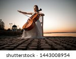 Girl In A White Dress Playing...
