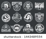 Vintage Mixed Martial Arts Clu...