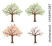 Tree In Four Seasons   Spring ...