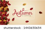 autumn is coming background... | Shutterstock .eps vector #1443650654
