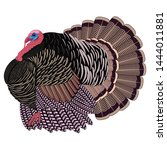 big realistic turkeycock.... | Shutterstock .eps vector #1444011881