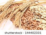 close up of oats and grain | Shutterstock . vector #144402331