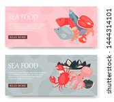 seafood and fish set of banners ... | Shutterstock .eps vector #1444314101