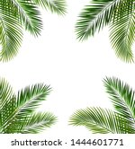 frame with palm leaf isolated... | Shutterstock .eps vector #1444601771
