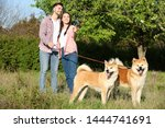 Stock photo owners walking their adorable akita inu dogs in park 1444741691