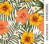 tropical exotic tender lovely... | Shutterstock . vector #1444820081
