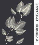 layout congratulatory card...   Shutterstock .eps vector #1445013314