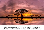 Panorama Silhouette Tree In...