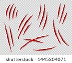 claws scratches. animal claw... | Shutterstock .eps vector #1445304071