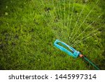 Small photo of Modern oscillating sprinkler on the mown lawn in the garden