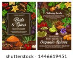 spices and culinary herbs ... | Shutterstock .eps vector #1446619451