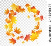 maple leaves vector  autumn... | Shutterstock .eps vector #1446648674