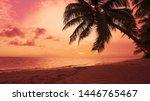 Red Dawn On Palm Isle Beach....