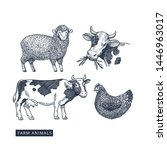 farm animals collection. cow ... | Shutterstock .eps vector #1446963017
