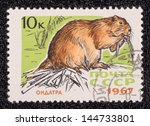 ussr   circa 1967  a stamp... | Shutterstock . vector #144733801