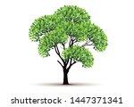 tree vector icon. logo design... | Shutterstock .eps vector #1447371341