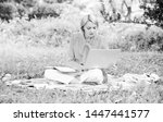 guide starting freelance career.... | Shutterstock . vector #1447441577