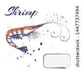 ink hand drawn shrimp or prawn... | Shutterstock .eps vector #1447737494