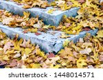 Stock photo dry leaf on ground gray leafs cover surface of ground is beauty pattern background in garden 1448014571