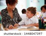 Woman Elementary School Teache...