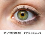 White Person With Green Eye