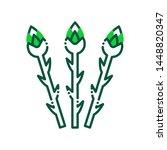 asparagus color line icon....