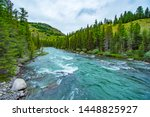 Altai Mountains. River Argut....