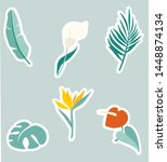 tropical flower and plants... | Shutterstock .eps vector #1448874134