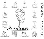 sunflower hand draw icon....