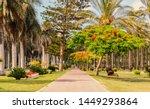 Montazah park at alexandria egypt