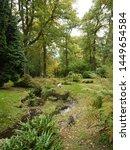 Batsford Arboretum 11 October 2019