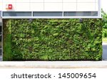 Green Wall Building In The City