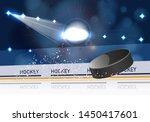 ice hockey stadium with... | Shutterstock . vector #1450417601