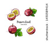 passion fruit drawing  passion... | Shutterstock .eps vector #1450589414