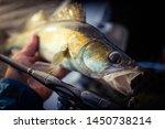 fishing background. trophy... | Shutterstock . vector #1450738214