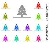 christmas tree  fir tree in the ...