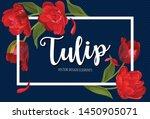 Blooming Beautiful Red Tulip...