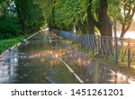 Small photo of Sunny rain splashes and bubbles on puddles during a downpour at sunset in a poplar alley.