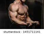 handsome strong athletic men...   Shutterstock . vector #1451711141