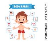 vector illustration of human...   Shutterstock .eps vector #1451766974