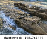 sea lions   seals napping on a... | Shutterstock . vector #1451768444