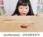 Small photo of The cute little girl looking and afraid of cockroaches, Because the cockroaches are dirty and disgusting, focus on cockroaches, blur background, filter