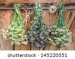 Freshly Harvested Herbs Hangin...