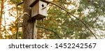 Birdhouse On A Pine In The...