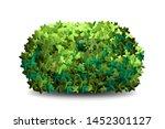 garden bush. green garden...   Shutterstock .eps vector #1452301127