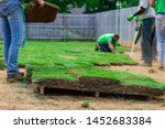 Landscaping crew laying new sod in a backyard - stock photo
