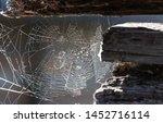 Cobweb Or Spiderweb On Old...