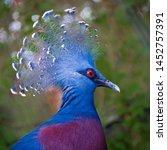 A Side Profile Headshot Of A...